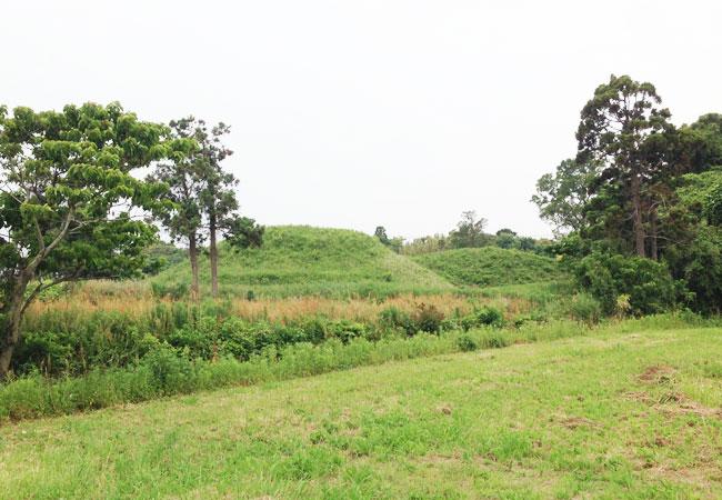 新原・奴山古墳群の画像 p1_35